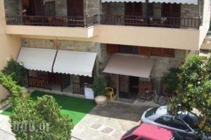 Edelweiss Studios_best deals_Hotel_Aegean Islands_Thasos_Thasos Chora