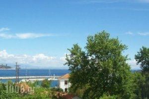 Edelweiss Studios_best prices_in_Hotel_Aegean Islands_Thasos_Thasos Chora