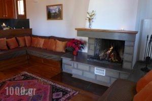 Hotel Xenion tou Georgiou Merantza_best prices_in_Hotel_Epirus_Arta_Agnanda
