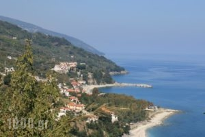 Papa Nero Studios And Apartments_best deals_Apartment_Thessaly_Magnesia_Mouresi