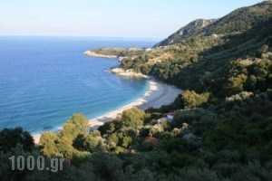 Papa Nero Studios And Apartments_holidays_in_Apartment_Thessaly_Magnesia_Mouresi