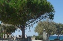 Akti Kastraki Areti Bungalows in Naxos Chora, Naxos, Cyclades Islands