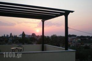Vasiliki Studios_holidays_in_Hotel_Aegean Islands_Lesvos_Petra