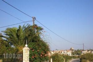 Vasiliki Studios_lowest prices_in_Hotel_Aegean Islands_Lesvos_Petra