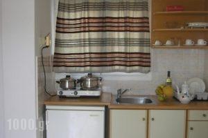 Fiore Di Mare Studios_best prices_in_Hotel_Ionian Islands_Kefalonia_Argostoli