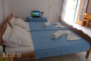 Fiore Di Mare Studios_holidays_in_Hotel_Ionian Islands_Kefalonia_Argostoli