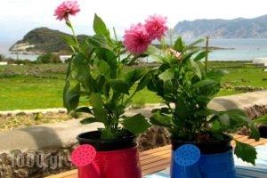 Kimolia Gi_accommodation_in_Hotel_Cyclades Islands_Milos_Milos Rest Areas