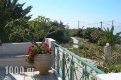 Villa Petri in Kefalonia Rest Areas, Kefalonia, Ionian Islands