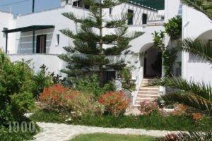 Pyrgos Beach_accommodation_in_Hotel_Cyclades Islands_Naxos_Agios Prokopios