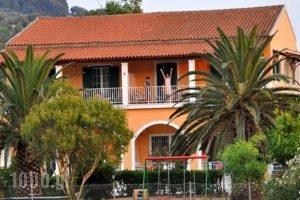 Irene Villas_accommodation_in_Villa_Ionian Islands_Corfu_Arillas