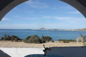 Orkos Blue Coast_holidays_in_Hotel_Cyclades Islands_Paros_Alyki