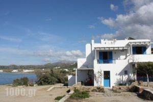 Orkos Blue Coast_accommodation_in_Hotel_Cyclades Islands_Paros_Alyki