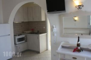 Orkos Blue Coast_best prices_in_Hotel_Cyclades Islands_Paros_Alyki