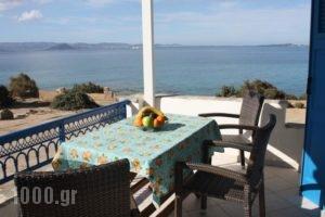 Orkos Blue Coast_travel_packages_in_Cyclades Islands_Paros_Alyki