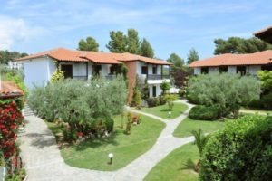 Philoxenia Bungalows_holidays_in_Hotel_Macedonia_Halkidiki_Psakoudia