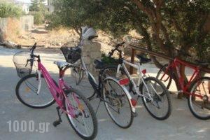 Faros Houses_holidays_in_Hotel_Crete_Lasithi_Sitia
