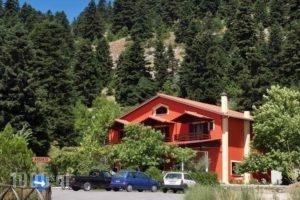 Hani Mpagasaki_accommodation_in_Hotel_Central Greece_Evritania_Ditiki Fragista
