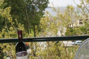 Gikas Apartments_best deals_Apartment_Central Greece_Evia_Krya Vrysi