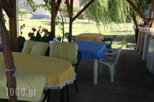 Nikolaidis House_travel_packages_in_Macedonia_Halkidiki_Haniotis - Chaniotis