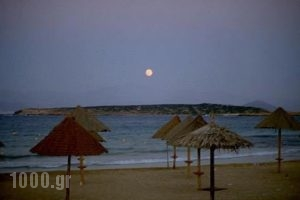 Surfing Beach Huts_holidays_in_Hotel_Cyclades Islands_Paros_Paros Chora