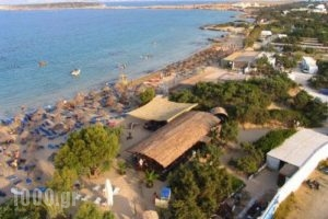 Surfing Beach Huts_travel_packages_in_Cyclades Islands_Paros_Paros Chora