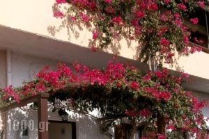 Ostria Rooms_accommodation_in_Room_Crete_Chania_Palaeochora
