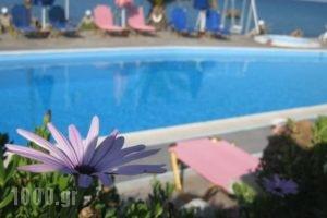 Villa Violetta_best prices_in_Villa_Aegean Islands_Samos_Karlovasi