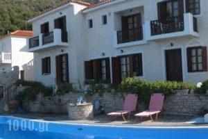 Villa Violetta_accommodation_in_Villa_Aegean Islands_Samos_Karlovasi