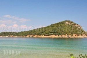 Pension Sotiria_travel_packages_in_Aegean Islands_Thasos_Thasos Chora