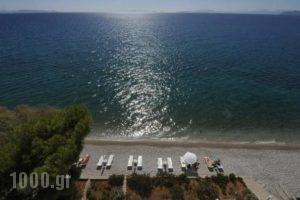 Siagas Beach Hotel_travel_packages_in_Peloponesse_Korinthia_Agioi Theodori