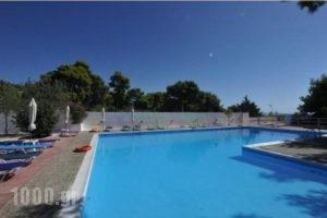 Siagas Beach Hotel_lowest prices_in_Hotel_Peloponesse_Korinthia_Agioi Theodori