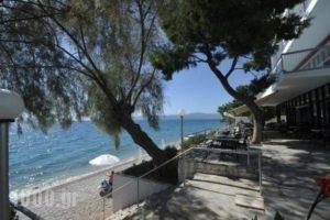Siagas Beach Hotel_holidays_in_Hotel_Peloponesse_Korinthia_Agioi Theodori