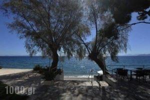 Siagas Beach Hotel_best deals_Hotel_Peloponesse_Korinthia_Agioi Theodori