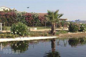 Asterias Studios & Apartments_best deals_Apartment_Crete_Chania_Akrotiri