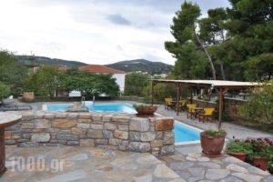 Kamelia Villas_best prices_in_Villa_Sporades Islands_Skopelos_Panormos