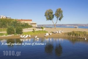 Asterias Studios & Apartments_travel_packages_in_Crete_Chania_Akrotiri