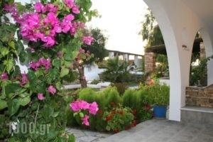 Skarmoutsos Studios_holidays_in_Hotel_Cyclades Islands_Ios_Ios Chora