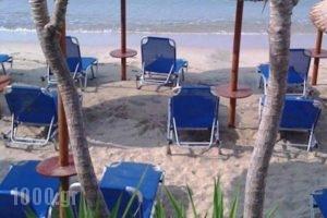 Piatsa Michalis_lowest prices_in_Hotel_Aegean Islands_Thasos_Potos