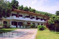 Elena Apartments & Studios in Chalkidiki Area, Halkidiki, Macedonia