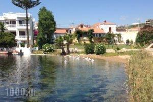 Asterias Studios & Apartments_lowest prices_in_Apartment_Crete_Chania_Akrotiri