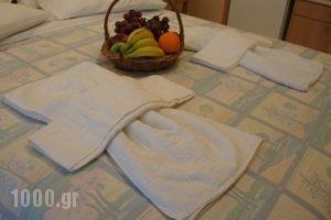 Nontas Home_holidays_in_Hotel_Ionian Islands_Lefkada_Lefkada's t Areas
