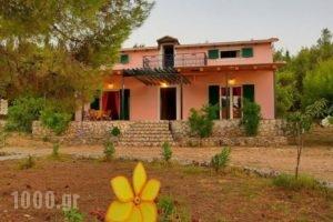 Villa Elatia_best prices_in_Villa_Ionian Islands_Kefalonia_Kefalonia'st Areas