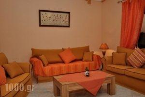 Villa Elatia_lowest prices_in_Villa_Ionian Islands_Kefalonia_Kefalonia'st Areas