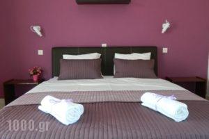 Roseberry Studios_accommodation_in_Hotel_Dodekanessos Islands_Rhodes_Faliraki