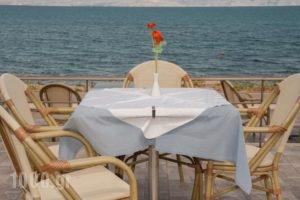 Sunset Hotel_best prices_in_Hotel_Peloponesse_Arcadia_Astros