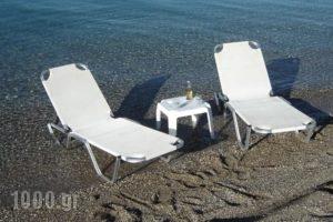 Stavento_holidays_in_Hotel_Peloponesse_Achaia_Trapeza