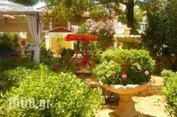 Kuris Apartments in Zakinthos Chora, Zakinthos, Ionian Islands
