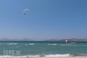 Mariliza Beach Hotel_best deals_Hotel_Dodekanessos Islands_Kos_Kos Rest Areas