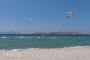 Mariliza Beach Hotel_best prices_in_Hotel_Dodekanessos Islands_Kos_Kos Rest Areas
