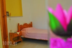 Makis & Bill Apartments_holidays_in_Apartment_Ionian Islands_Corfu_Arillas